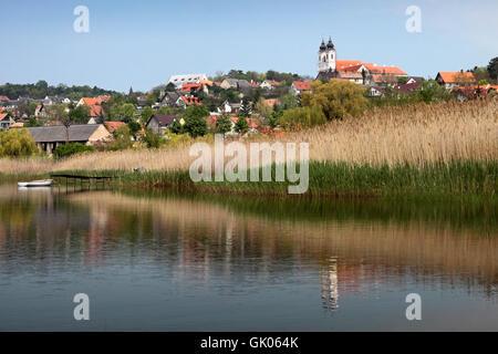 Reed-Ungarn-Plattensee - Stockfoto