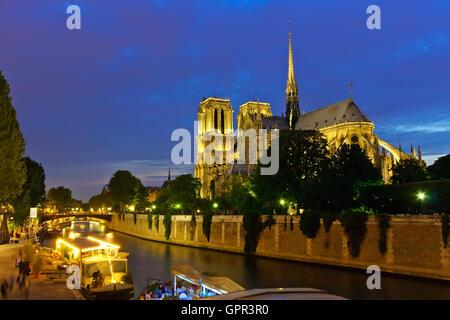 Notre Dame de Paris - Stockfoto