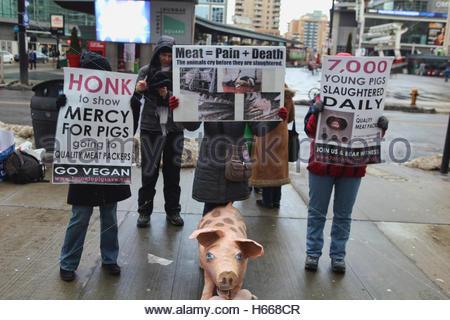 Aktivisten hält Zeichen Protest gegen das Schlachten von Schweinen und fördern eine vegane Lebensweise in der Innenstadt - Stockfoto