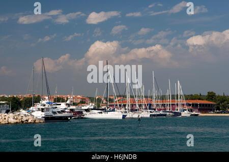 Segelboote im Hafen von Novigrad, Istrien, Kroatien, Europa - Stockfoto