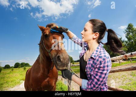 Porträt der jungen Frau, die pflegend Pferd im Sommer - Stockfoto