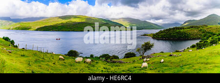Lough Nafooey, County Clare, Irland. - Stockfoto