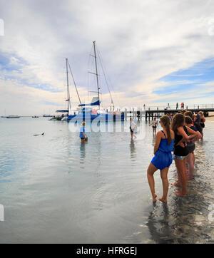 Menschen säumen den Strand die Delphine in Monkey Mia zu sehen. Western Australia - Stockfoto