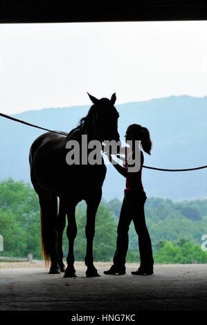 Junge Frau mit Pferd in offenen Scheunentor Silhouette, - Stockfoto