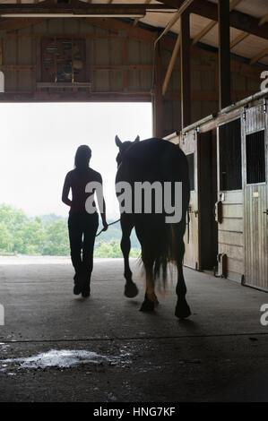 Junge Frau mit Pferd in offenen Scheunentor Silhouette zu Fuß nach außen, minimale Bewegungsunschärfe auf Zahlen. - Stockfoto