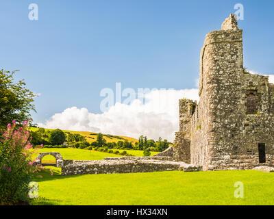Klösterliche Ruinen von Fore Abbey im County Westmeath, Irland - Stockfoto