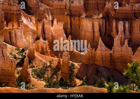 USA, Utah, Bryce Canyon Nationalpark. Das Hauptmerkmal des Parks ist Bryce Canyon, der trotz seines Namens ist keine - Stockfoto