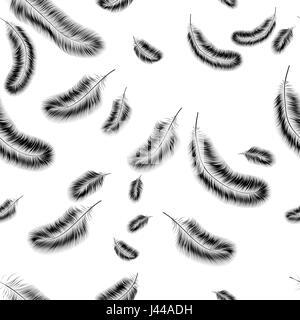 Zarte nahtlose Hintergrund der schwarzen Federn auf einem weißen Hintergrund. - Stockfoto