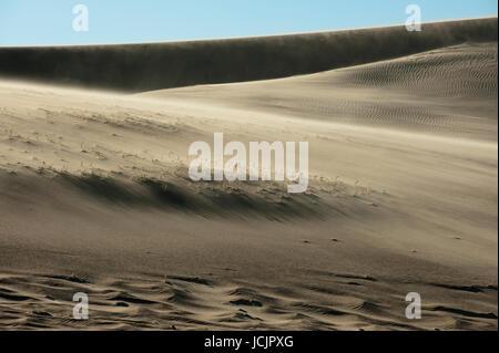 Wind auf Sanddünen, Skeleton Coast Nationalpark, Namibia. - Stockfoto
