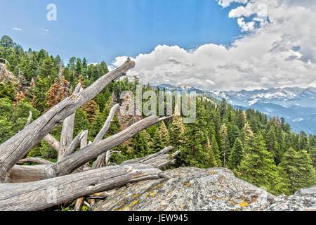 Aussichtspunkt Moro Rock im Sequoia National Park - Stockfoto