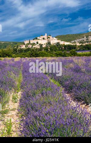 Gipfelstadt Banon, Provence, Frankreich - Stockfoto