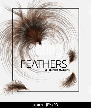 Vektor-Illustration von Federn.   Stilvollen weißen Hintergrund, сover Vorlage oder Flyer Design. - Stockfoto
