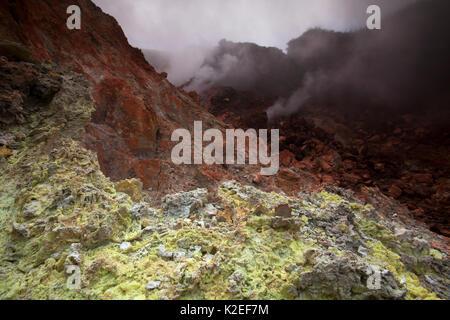 Fumarole, Evermann Vulkan, Insel Socorro, Revillagigedo Archipel Biosphärenreservat/Inselgruppe de Revillagigedo - Stockfoto