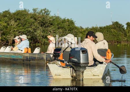Touristen warten auf einen Jaguar zu bewegen, auf der Stelle in die Tour Boote auf einem Fluss Safari im Pantanal - Stockfoto