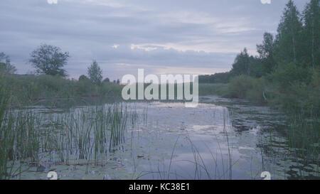 Misty Morning auf Sumpf in der Abenddämmerung im Frühjahr. Sumpf in der Dämmerung - Stockfoto