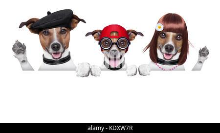 Familie von Hunden, Vater, Mutter und Sohn winken mit Pfoten - Stockfoto