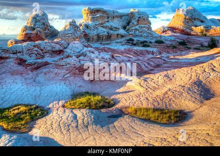 Den Sonnenuntergang erzeugt Schatten über die weiße Koralle und Blumenkohl Gehirn rock Der Swirl Felsformation in - Stockfoto