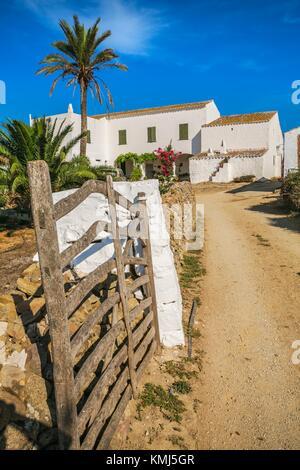 Artisan Käse Hersteller Haus. Binicano Eigenschaft. Ciutadella de Menorca Gemeinde. Menorca Insel. Balearen. Spanien - Stockfoto