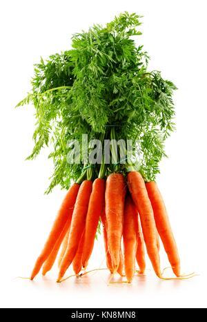 Frische Karotten Bündel auf weißem Hintergrund. - Stockfoto