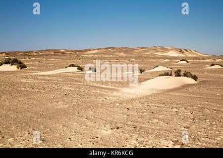 Sanddünen an der Skelettküste Namibias - Stockfoto