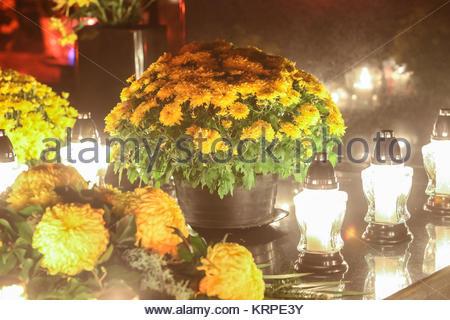 Blumenschmuck auf dem Grab - Stockfoto