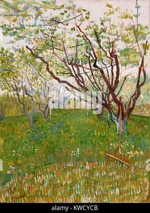 Die blühenden Obstgarten, von Vincent Van Gogh, 1888, Dutch Post-Impressionist, Öl auf Leinwand. Die Äste der Bäume - Stockfoto