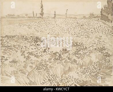 Weizenfeld, von Vincent Van Gogh, 1888, Dutch Post-Impressionist reed Stift über graphit zeichnung. Die Zeichnung - Stockfoto