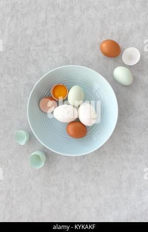 Blaue Eier, braune Eier und weißen Ente Eier, ganz und halbiert, in einem Pastell-blaue Schüssel auf Grau strukturierten - Stockfoto