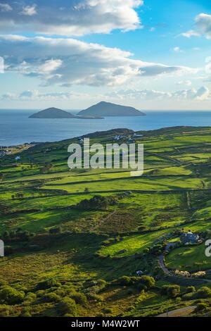 Grüne Felder und die Küste in der Nähe von Caherdaniel, County Kerry, Irland. - Stockfoto