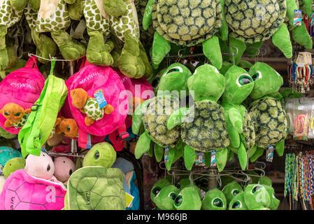 ZAKYNTHOS, Griechenland - 27 September 2017: Toy Meeresschildkröten in ein Geschäft an der Straße auf der Insel Zakynthos in Griechenland. - Stockfoto