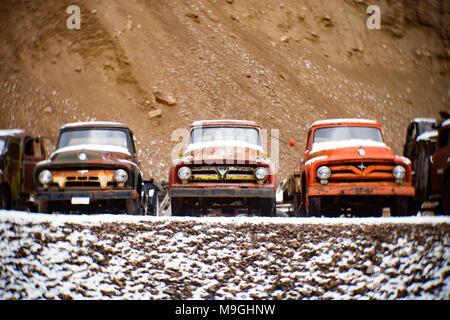 Eine Reihe von alten Ford 1953, 1954 und 1955 Pickup Trucks, in einem alten Steinbruch, östlich von Clark Gabel Idaho. - Stockfoto