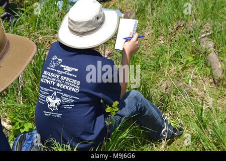 Invasive Arten überwachen in T Shirt - Stockfoto
