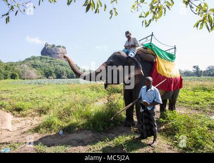 Touristische reiten auf einem Elefanten in der Nähe von Sigiriya, zentrale Provinz, Sri Lanka, Asien. - Stockfoto