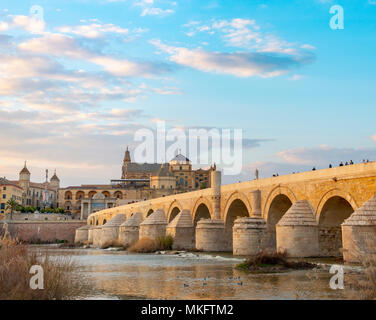 Atmosphäre am Abend, Puente Romano, Römische Brücke über den Rio Guadalquivir, hinter Mezquita Catedral de Córdoba, Córdoba, Andalusien - Stockfoto