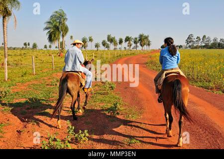 Touristische genießt einen Ausflug zu Pferde mit einem Führer auf einem Hof in das Pantanal Feuchtgebiet, Mato Grosso do Sul, Brasilien - Stockfoto