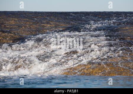 Close Up, Montgomery Reef, die Kimberley - Stockfoto