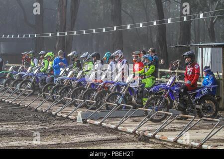 Runde 2 viktorianischen älteren MotoCross Meisterschaften - 28. Juli 2018 - Colac, Victoria, Australien - Fahrer am Start der MX2 - ein klasse Rennen. - Stockfoto
