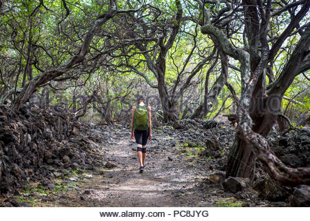 Eine Frau geht über einen Weg in die Ahihi-Kinau Natural Area Reserve. - Stockfoto