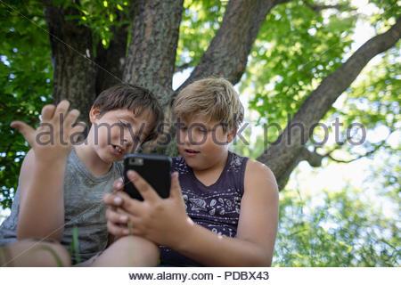 Brüder mit smart phone unter Baum - Stockfoto