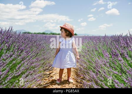 Frankreich, Provence, Plateau von Valensole, Kleinkind stehendes Mädchen in Lila Lavendelfelder im Sommer - Stockfoto