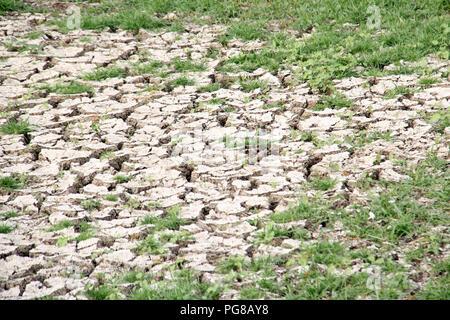 Trockene und rissige Erde Austrocknen in eine schwere Dürre - Stockfoto