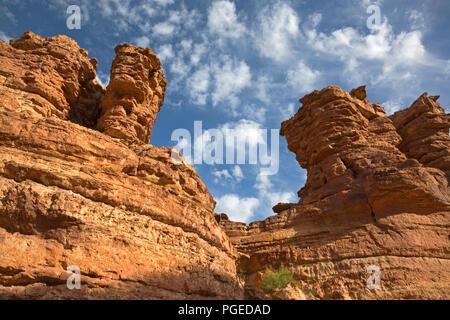 AZ 00352-00 ... ARIZONA - Bunte Wände der Kathedrale Waschen im Glen Canyon National Recreation Area. - Stockfoto