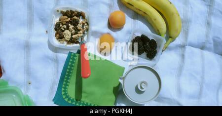 Picknick Schüssel Müsli mit Obst und Joghurt im Kunststoff Quadratische Schale mit Griff rot Löffel auf eine Papierserviette auf der rechten Seite ist eine Tasse Tee in der silve - Stockfoto