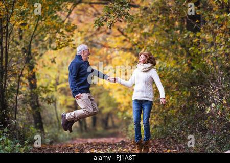 Senior Paar in einem Herbst Natur, halten sich an den Händen und Springen. - Stockfoto