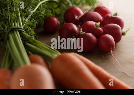 In der Nähe von einem kleinen Bündel von Radieschen, durch frische Karotten umgeben und einen Kopf Salat auf einem hellen Braun, unter Morgenlicht. - Stockfoto
