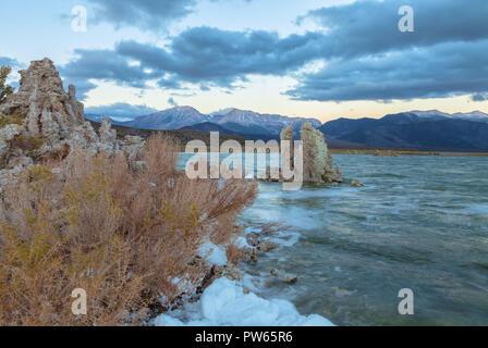 Mono Lake Küste sehr früh Lee Vining, Kalifornien, USA, im frühen Herbst. - Stockfoto