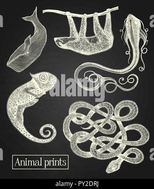 Weiße Tiere Abbildungen auf der Tafel im Hintergrund - Stockfoto
