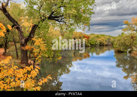 Oklahoma City Lake Hefner von Bäumen im Herbst Farbe umgeben - Stockfoto