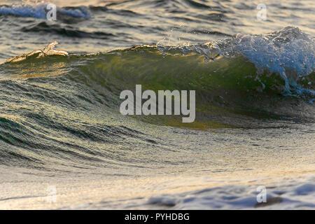 Wave detail, mit Wassertropfen - Stockfoto