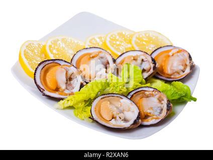 Frische Muscheln Muscheln (glycymeris) serviert mit Zitrone auf Platte. Auf weissem Hintergrund - Stockfoto